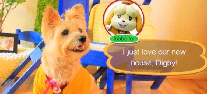 Animal Crossing: Happy Home Designer Comercial
