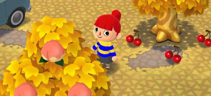 ¿Quieres un jardín en Animal Crossing: Pocket Camp?