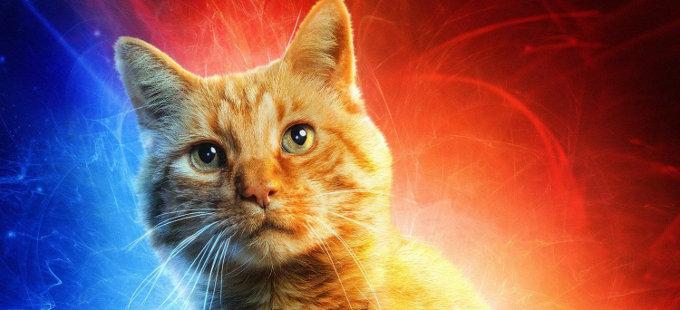 ¿Por qué cambió el nombre del gato de Capitana Marvel?